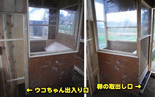 鳥小屋建築中 8_c0063348_21225687.jpg