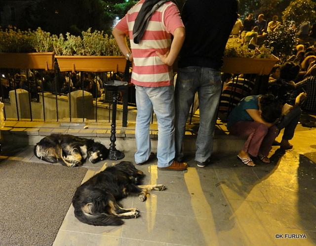 トルコ旅行記 26 イスタンブールの夜は賑やか!_a0092659_18435486.jpg
