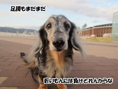d0020869_14591580.jpg