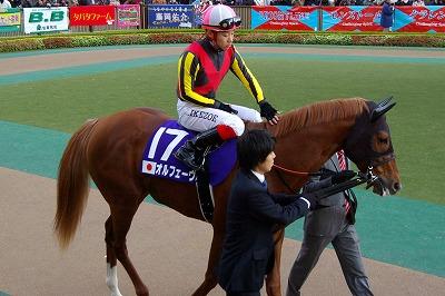 ジェンティルドンナが三冠馬対決を制し、日本3歳牝馬史上初のジャパンC制覇!_b0015386_042720.jpg
