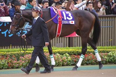 ジェンティルドンナが三冠馬対決を制し、日本3歳牝馬史上初のジャパンC制覇!_b0015386_04286.jpg