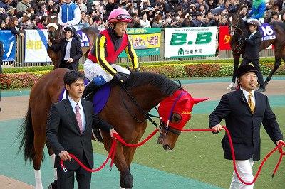 ジェンティルドンナが三冠馬対決を制し、日本3歳牝馬史上初のジャパンC制覇!_b0015386_065577.jpg