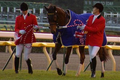 ジェンティルドンナが三冠馬対決を制し、日本3歳牝馬史上初のジャパンC制覇!_b0015386_0799.jpg