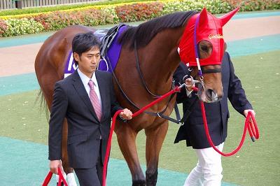 ジェンティルドンナが三冠馬対決を制し、日本3歳牝馬史上初のジャパンC制覇!_b0015386_08989.jpg