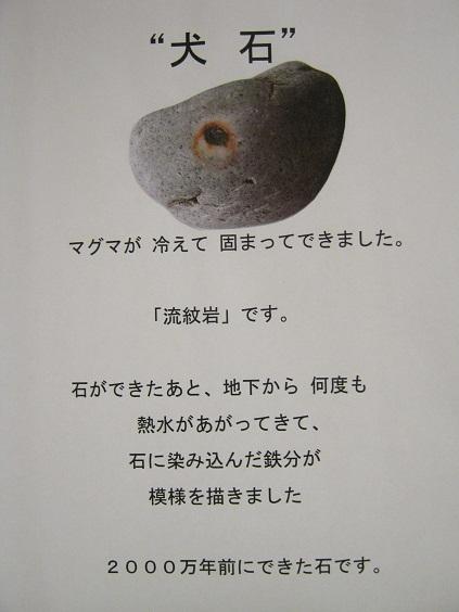 「奇跡の石の物語」 展 その1_e0134502_7221699.jpg
