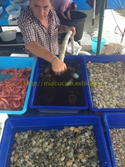 ナポリの老舗カフェと魚市場_b0107003_2101496.jpg