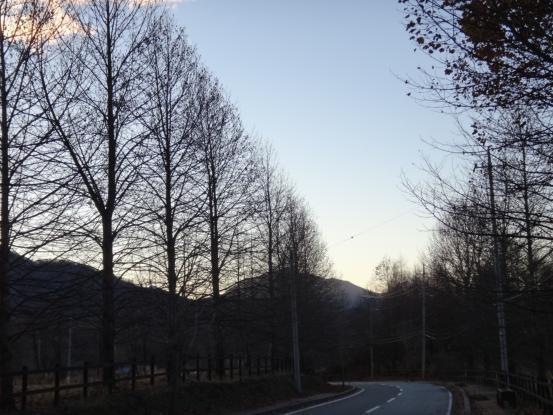 冬の訪れを感じる早朝散歩_f0064906_18225452.jpg