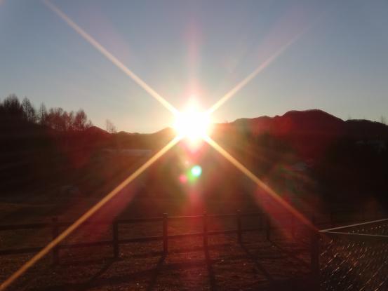 冬の訪れを感じる早朝散歩_f0064906_18234616.jpg