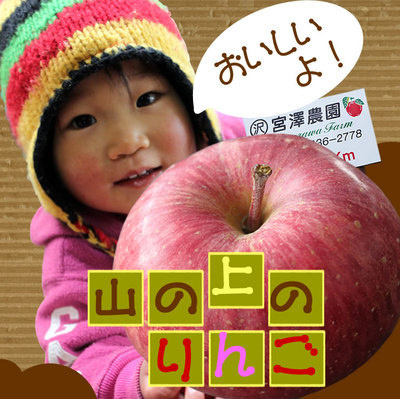 ♪新鮮 発芽野菜通信『希望』♪_d0063218_10099.jpg