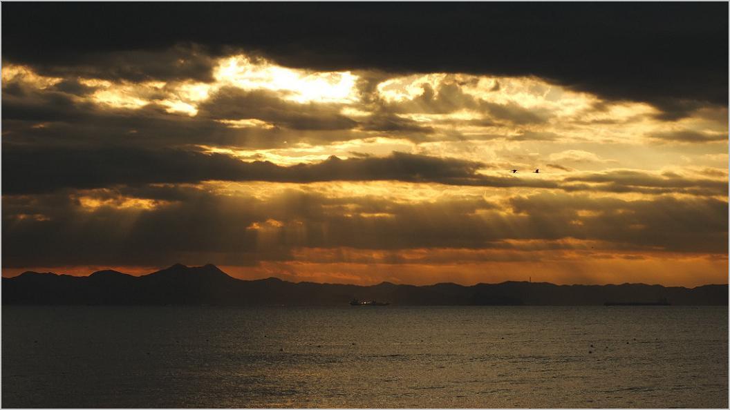 朝 の 風 景 No.29_d0039021_18402933.jpg