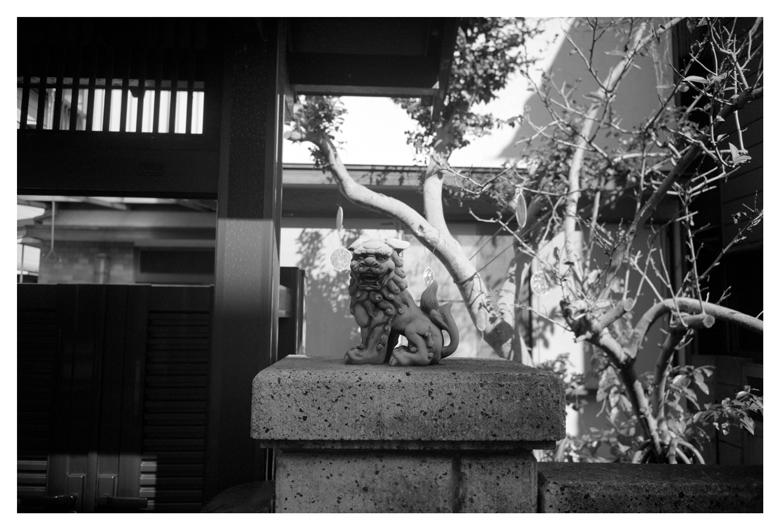 白黒大阪見聞録 23_c0215925_2014273.jpg