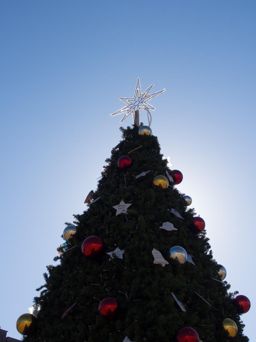 わが町のクリスマスツリー_c0021726_20384566.jpg