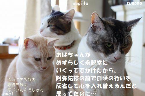 f0063729_22483216.jpg