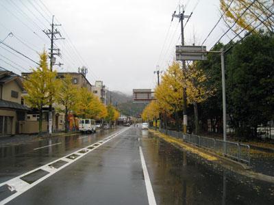 京都高島屋も今日で最終日!_a0129631_9224583.jpg