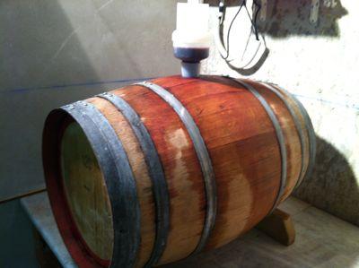 赤ワイン、ステンレスの容器から木樽へ_d0136540_8512074.jpg