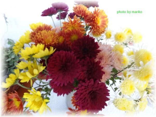 心が成長するピアノ_d0165645_22441550.jpg