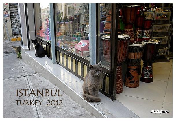 トルコ旅行記 27 イスタンブール新市街_a0092659_22312866.jpg
