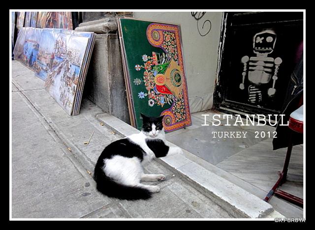 トルコ旅行記 27 イスタンブール新市街_a0092659_2301338.jpg