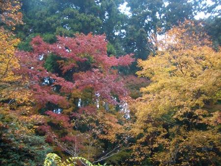 箱根の旅_c0138175_21405477.jpg