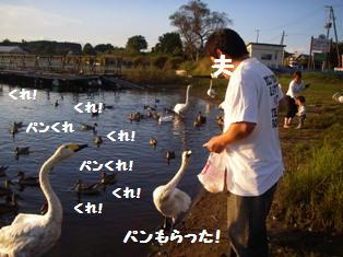 c0160092_16361825.jpg