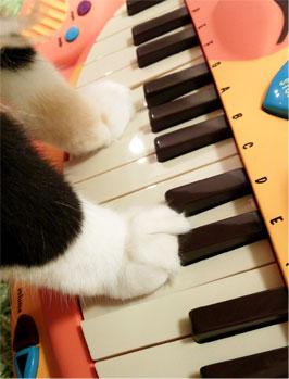 【にゃんこピアノ♪】アーティスティックな贈物ッ_d0224894_16234231.jpg