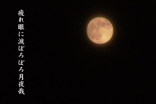 月夜_e0099713_22403188.jpg