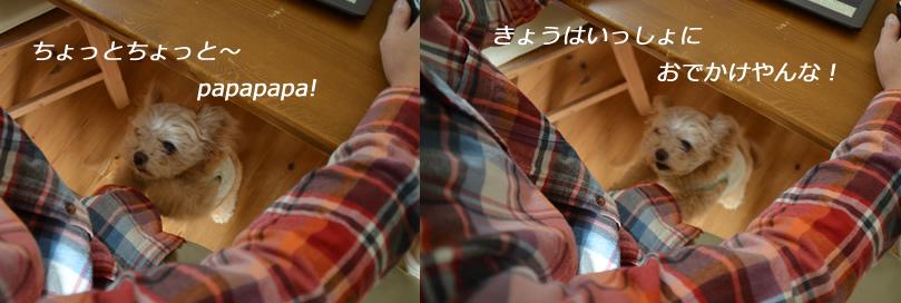 d0207515_19505019.jpg