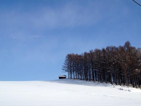 すっかり冬ですね。_f0096216_14575333.jpg