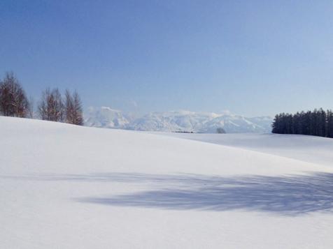 すっかり冬ですね。_f0096216_14592750.jpg