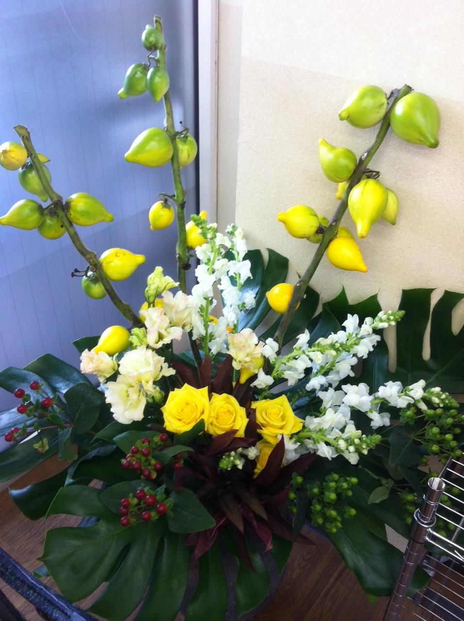 今週のお花とセール情報_a0200423_19595532.jpg