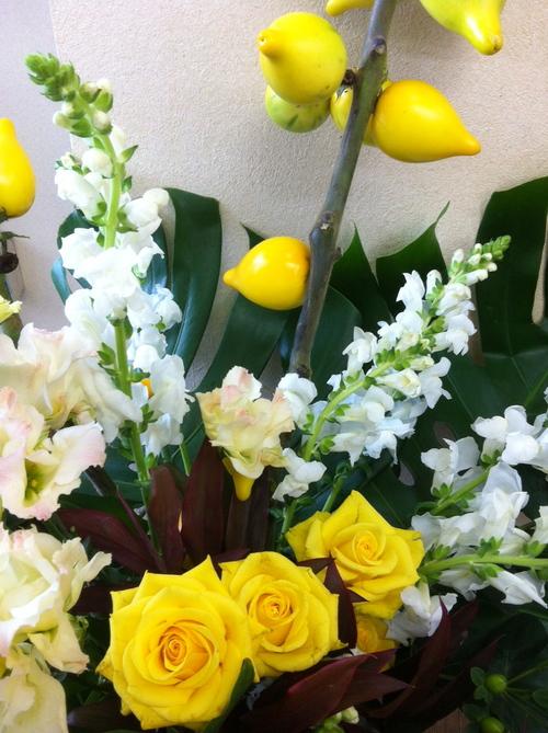 今週のお花とセール情報_a0200423_2003284.jpg