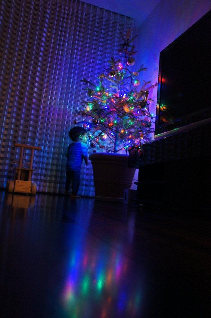 クリスマス支度開始~!_e0253026_8573815.jpg