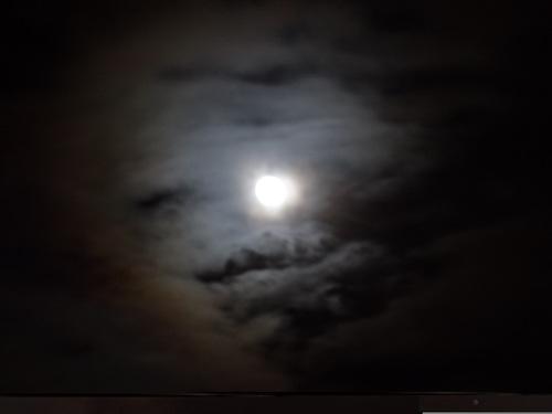お月見のお誘い♪_e0240147_19591513.jpg