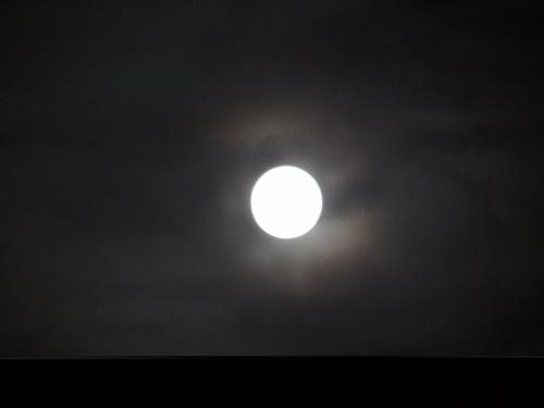 お月見のお誘い♪_e0240147_19592942.jpg