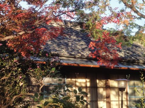 ようやく秋です。_b0124462_5505167.jpg