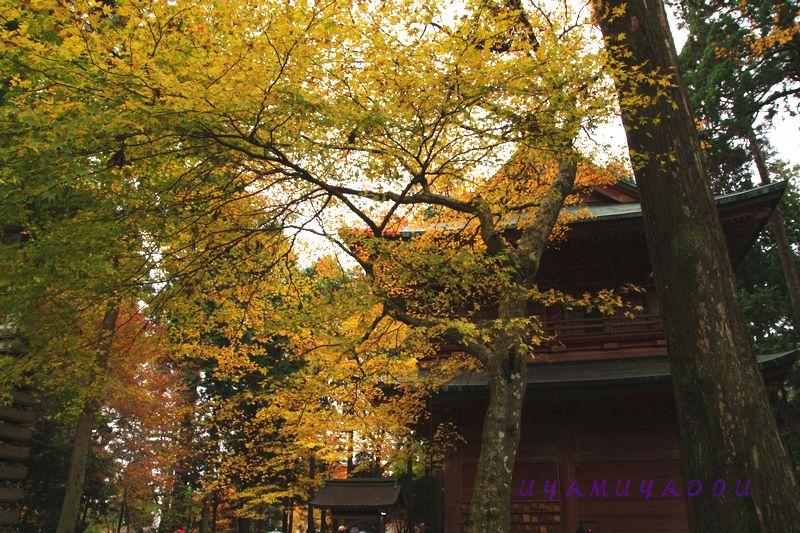 比叡山延暦寺.2012.11.18_a0157263_22243767.jpg