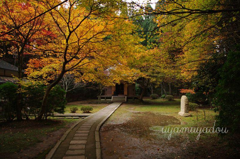 比叡山延暦寺.2012.11.18_a0157263_22294597.jpg