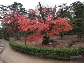 岡山・高松の旅②_a0168068_6242845.jpg