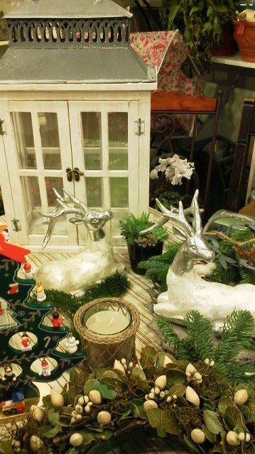 クリスマス_b0137969_19173990.jpg