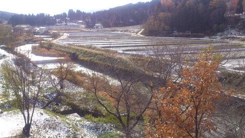 ついに初雪。_d0182179_15262925.jpg