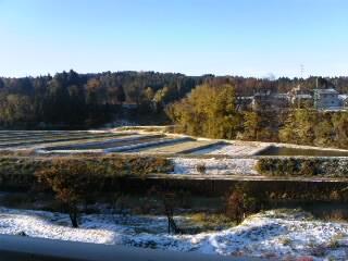 ついに初雪。_d0182179_1529327.jpg