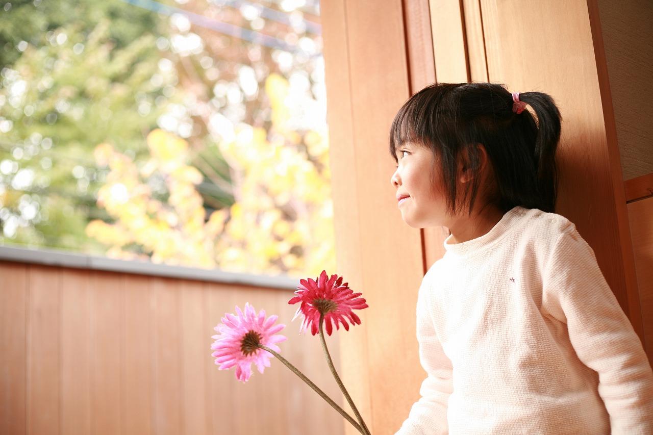 11月23日(金・祝) 紅葉撮影会終了_d0005380_11584584.jpg