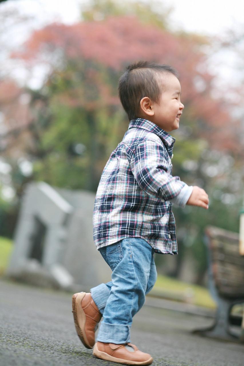 11月23日(金・祝) 紅葉撮影会終了_d0005380_11594195.jpg