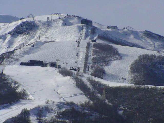 11/28 雪のち晴れ_a0140584_14481577.jpg