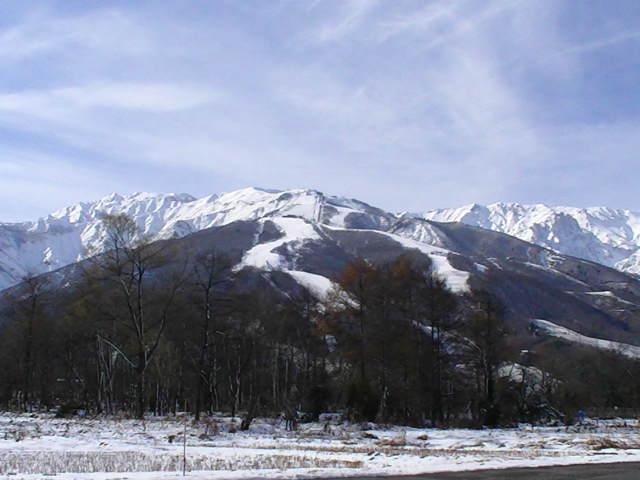 11/28 雪のち晴れ_a0140584_14513768.jpg