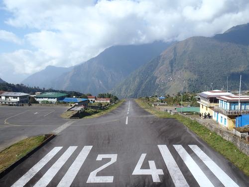 ネパール遠征〜動植物〜_c0206900_14565181.jpg