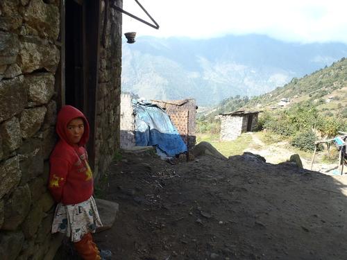 ネパール遠征〜動植物〜_c0206900_15182899.jpg
