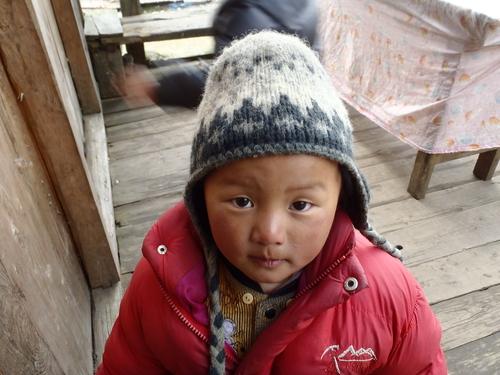 ネパール遠征〜動植物〜_c0206900_1521648.jpg
