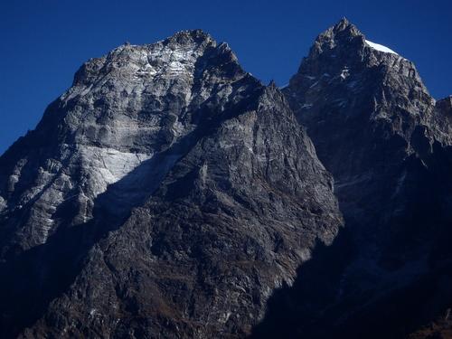 ネパール遠征〜動植物〜_c0206900_1535168.jpg