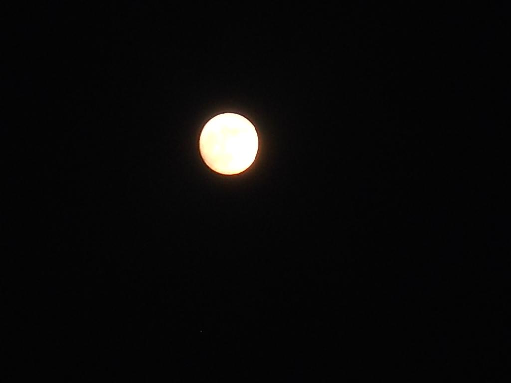 おなじ月あかりに~_f0146802_12442587.jpg